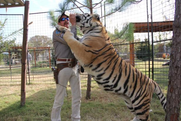 Tiger King Doku