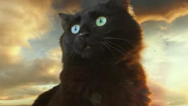 owlkitty-gozilla-trailer-2.jpg